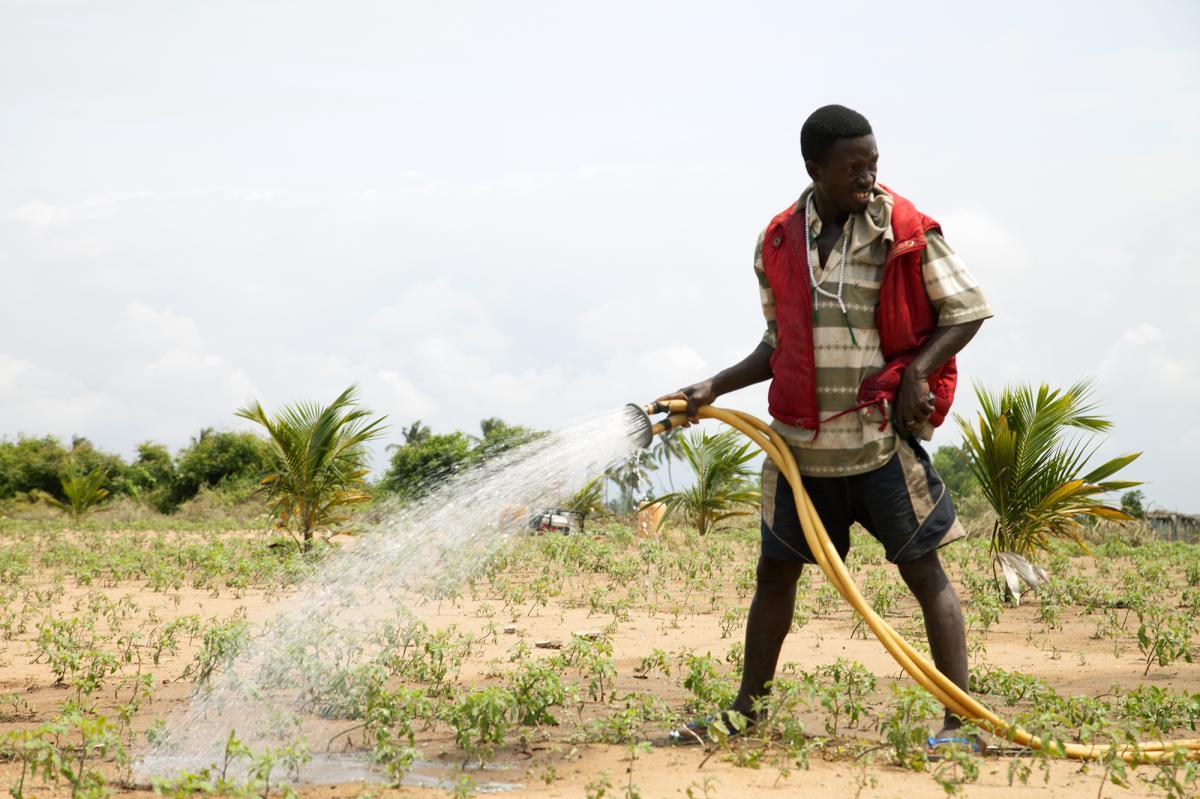 Appui multisectoriel à la sécurité alimentaire et nutritionnelle dans l'Atacora (AMSANA) (2015-2020)