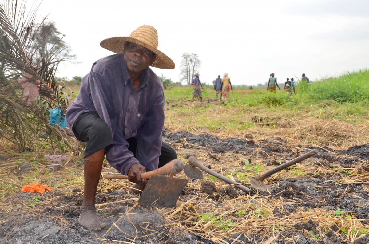 Appui au renforcement des institutions dans le secteur agricole au Bénin