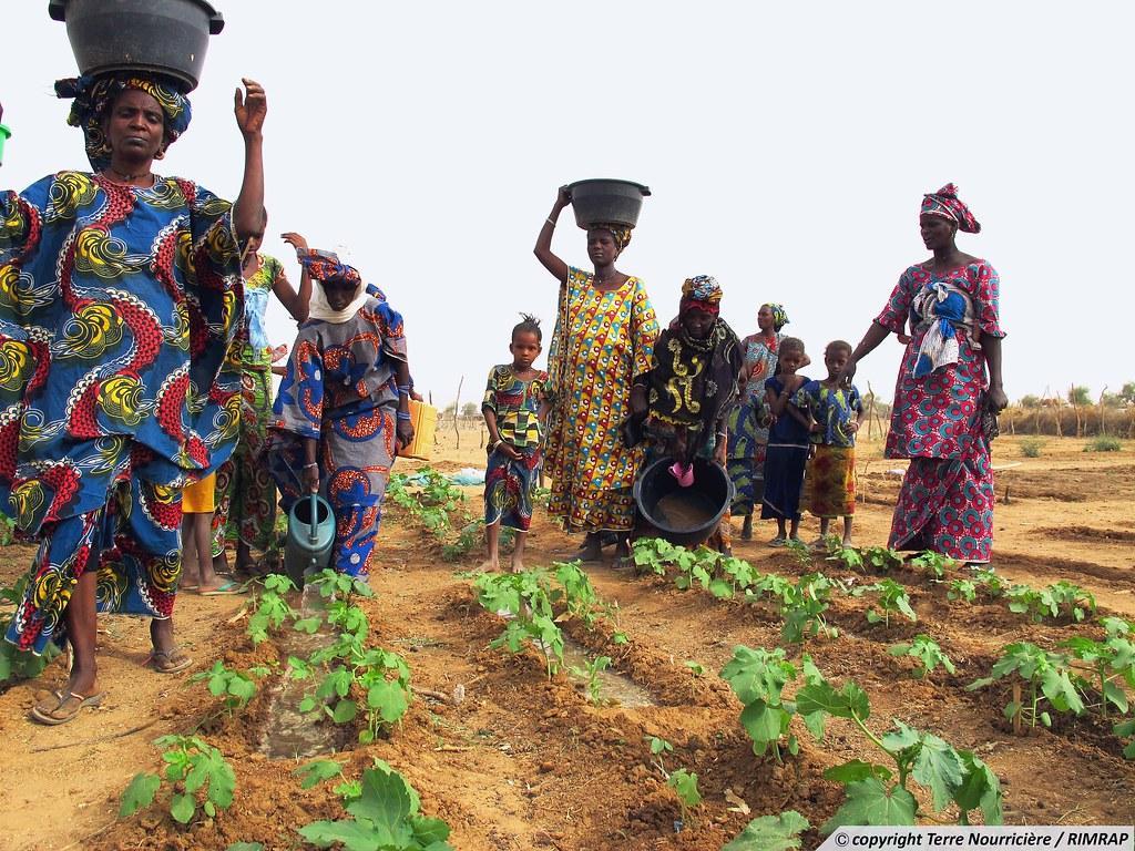 Renforcement des Investissements Productifs et Energétiques en Mauritanie pour le Développement Durable des zones rurales (RIMDIR) - Volet Enabel