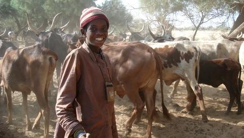 Appui à l'aménagement pastoral et à la sécurisation des systèmes pastoraux