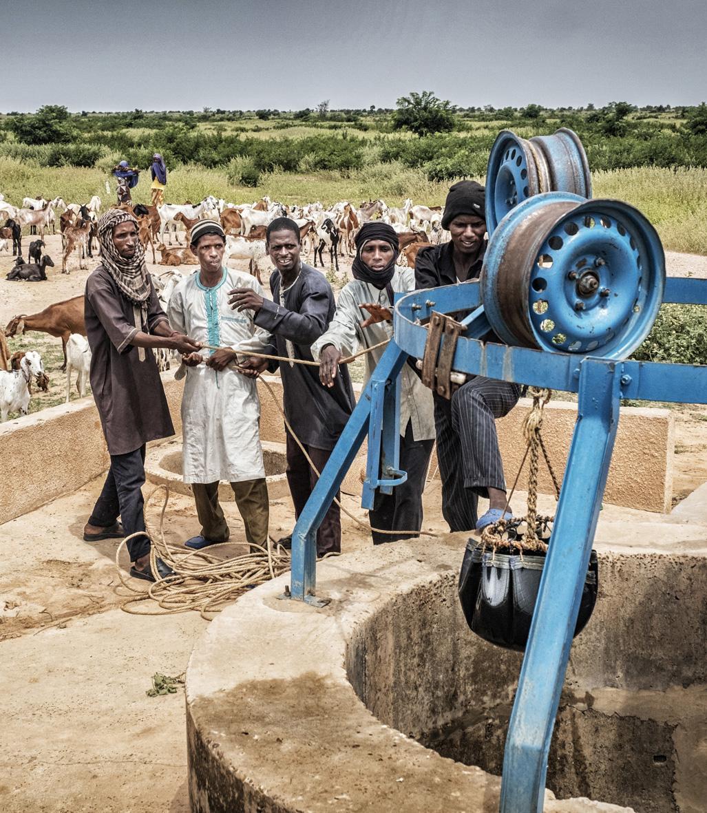 Résilience agro-sylvo-pastorale Ouest Niger