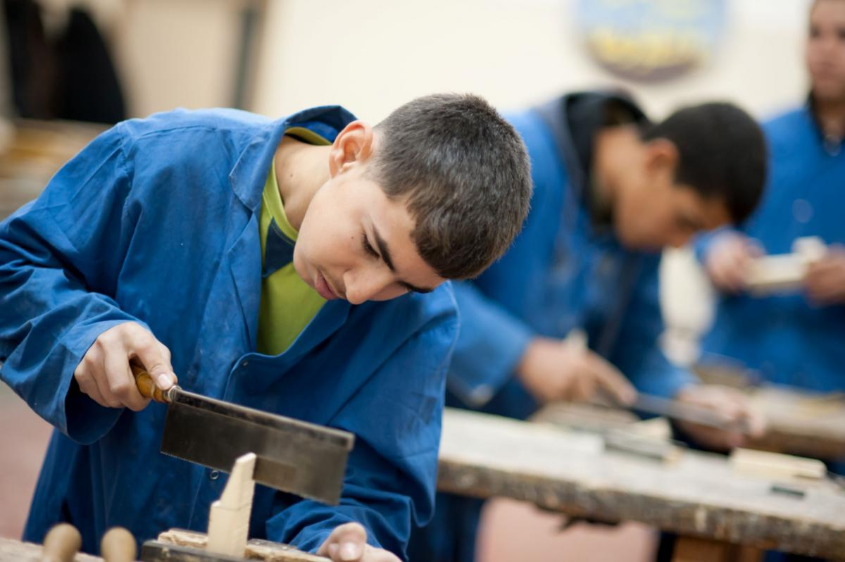 Skilled Young Palestine - Improving Resilience and Job Creation for Youth