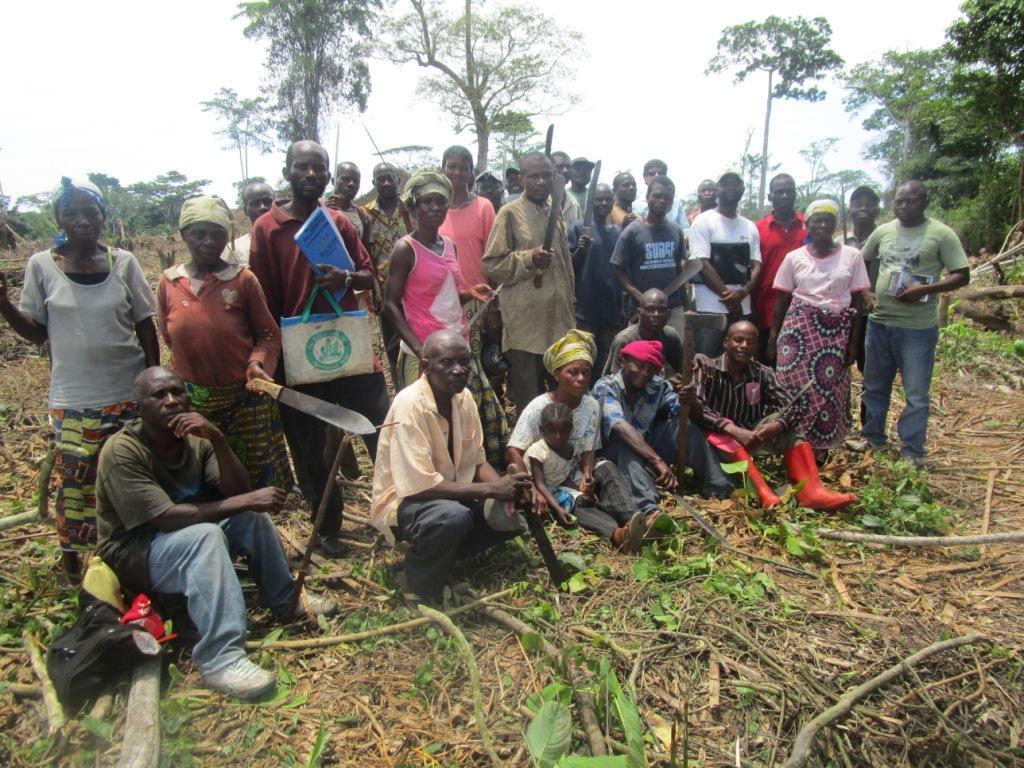 Programme de Développement Agricole dans le District de la Tshopo - Province Orientale – PRODAT