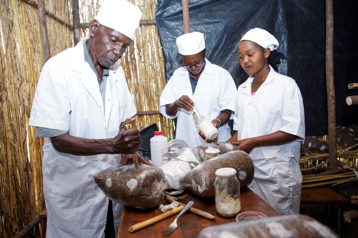 Burundi : Projet d'Appui Complémentaire à la Formation Professionnelle et Technique (ACFPT)