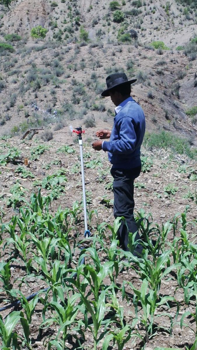 40 familias de regantes cuentan con agua para riego en Katiopampa (Yamparáez)