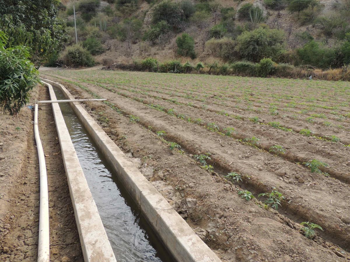 UN NUEVO CANAL DE IRRIGACIÓN EN EL MUNICIPIO OMEREQUE GARANTIZA LA SEGURIDAD ALIMENTARIA DE 50 FAMILIAS