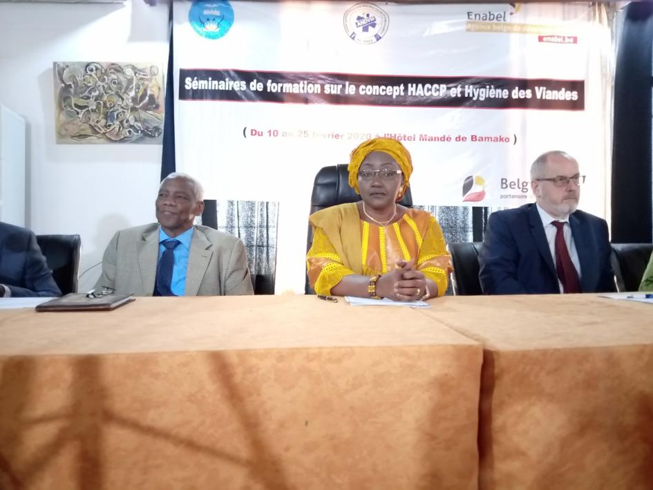 Santé: Enabel renforce les connaissances des docteurs vétérinaires de Koulikoro et du niveau national du Mali en hygiène des viandes et en système d'i