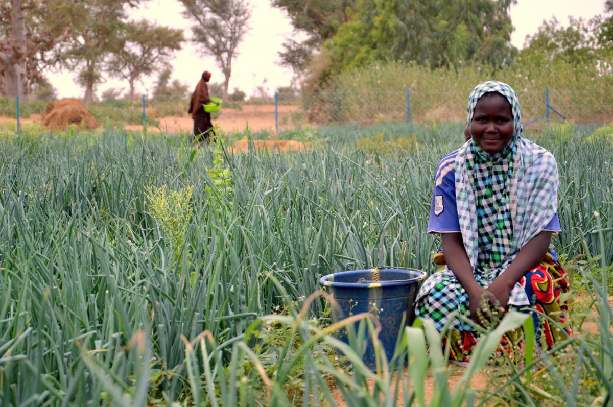 La sécurité alimentaire ne peut se penser sans les femmes rurales