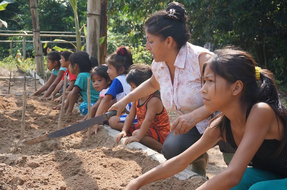 Experiencias de buenas prácticas en Educación Ambiental