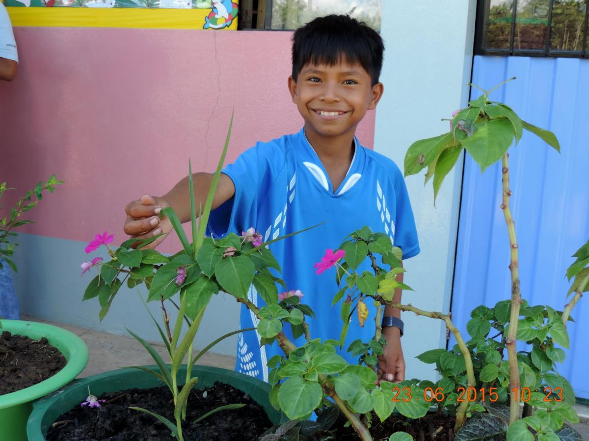 Enfoque ambiental en la educación básica