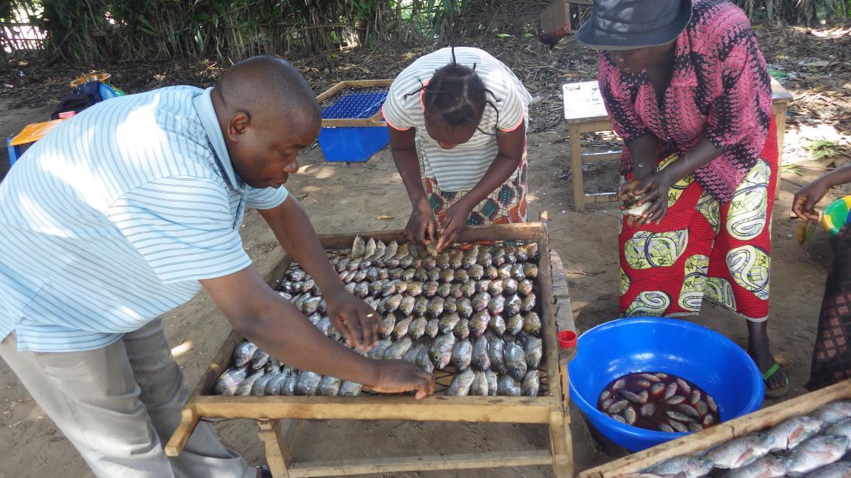 La pisciculture : outil de développement de la pêche artisanale.