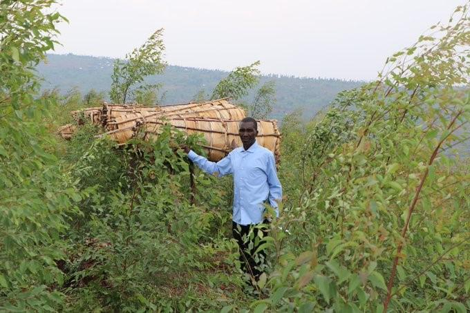 Rehabilitated forests handed over to local cooperatives