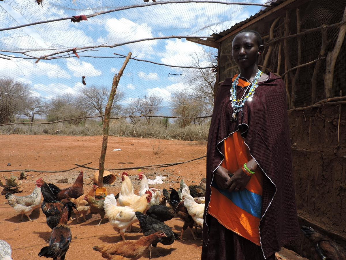 Focus on livestock: Chickens help Maasai to combat food insecurity.