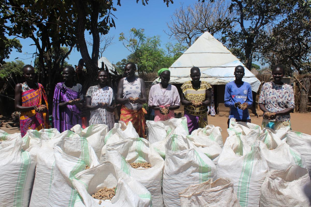 A fivefold harvest excites refugee farmers